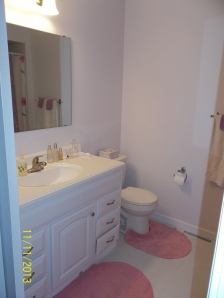 And Alissa and Crystal's new bathroom!